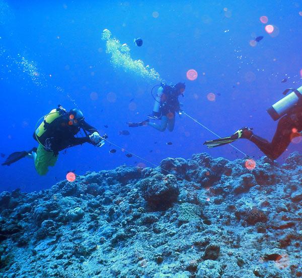 Deats-Big-Droppoff-Palau